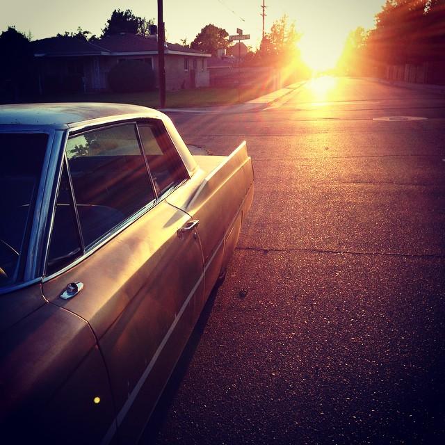 Cadillac. #monkeylight
