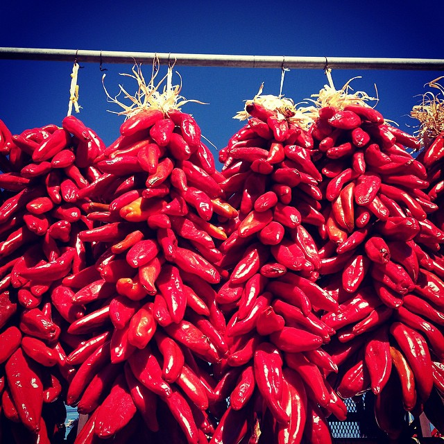Red chile ristras. #redorgreen? #christmas? #nm #abq