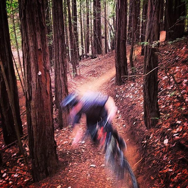 Tamarancho's Flow Trail. #marin #getyourflowon #fb