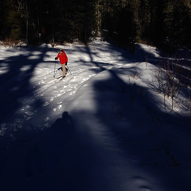 Morning ski tour in Northern New Mexico. #winterhasarrived #fb